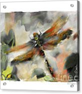 Dragonfly Garden Acrylic Print