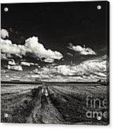 Drifting Clouds Acrylic Print