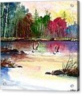 Duck Lake Acrylic Print