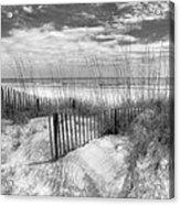 Dune Fences Acrylic Print by Debra and Dave Vanderlaan