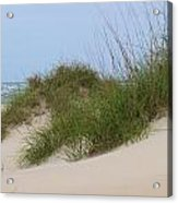 Dunes And Grasses 10 Acrylic Print