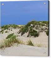 Dunes And Grasses 11 Acrylic Print