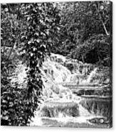 Dunn's River Acrylic Print by Thomas Leon