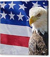 Eagle And Flag Acrylic Print