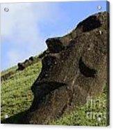 Easter Island 18 Acrylic Print
