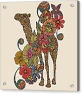 Easy Camel Acrylic Print