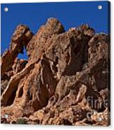 Elephant Rock Valley Of Fire State Park Nevada Acrylic Print