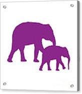 Elephants In Purple And White Acrylic Print