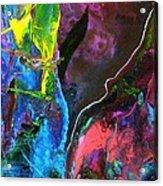 Emmylou Acrylic Print by Dan Cope