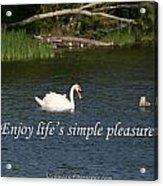 Enjoy Lifes Simple Pleasures Acrylic Print