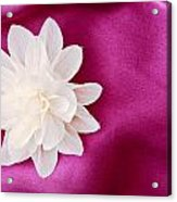 Fabric Flower Acrylic Print