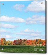 Fall Colors IIi Acrylic Print
