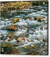 Fall Colors Stream Great Smoky Mountains Painted  Acrylic Print