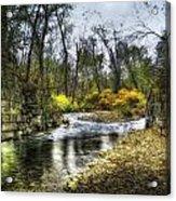Fall Creek Acrylic Print