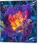 Fall Flame Acrylic Print