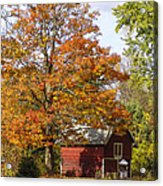 Fall View Acrylic Print