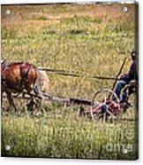 Farming With Horses Acrylic Print