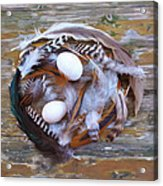 53. Feather Wreath Can Be Ordered Acrylic Print