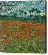 Field With Poppies  Acrylic Print