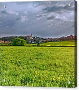 Fields Of Rapeseed In Lower Silesia Acrylic Print