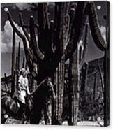 Film Homage Jean Harlow Bombshell 1933 Saguaro National Monument Tucson Arizona Duo-tone 2008 Acrylic Print