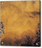 Film Noir Cornell Wilde Storm Fear 1956 Summer Storm Casa Grande Arizona 2004 Acrylic Print