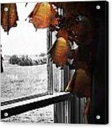 Fire Curtains Acrylic Print
