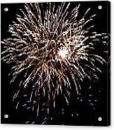 Fireworks Acrylic Print by Mark Malitz