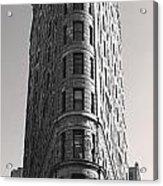 Flat Iron Building Acrylic Print
