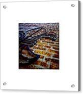 Fleur_08.22.12 Acrylic Print