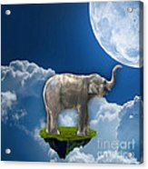 Flight Of The Elephant Acrylic Print
