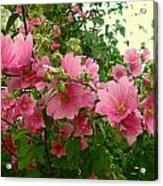 Floral Splash Acrylic Print