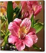 Flowers In Bloom Acrylic Print