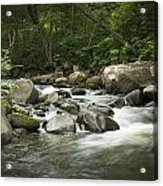 Flowing Stream In Vermont Acrylic Print