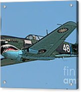 Flying Tiger Acrylic Print