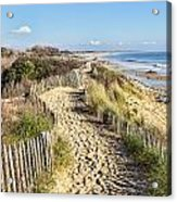 Footpath On The Atlantic Dune In Brittany Acrylic Print
