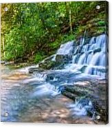 Forest Stream And Waterfall Acrylic Print