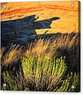 Fossil Beds And Grass Acrylic Print