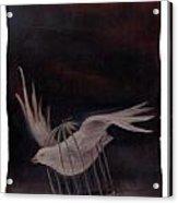 Freedom-2 Acrylic Print