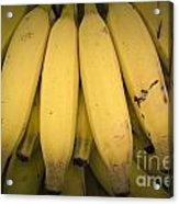 Fresh Bananas On A Street Fair In Brazil. Acrylic Print