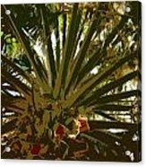 Fresh Cut Palm 2 Acrylic Print