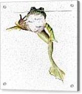 Frog On Waterline Acrylic Print