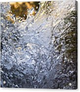 Frozen IIi Acrylic Print