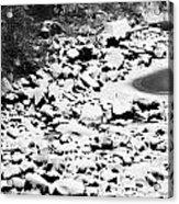 Frozen Riverbed In Winter Acrylic Print