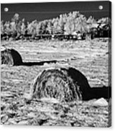frozen snow covered hay bales in a field Forget Saskatchewan Canada Acrylic Print by Joe Fox