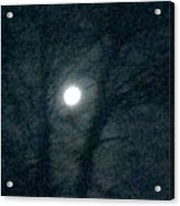 Fullmoon In Between The Trees  Acrylic Print
