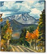 Gayle's Highway Acrylic Print