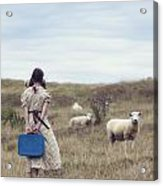 Girl With Sheeps Acrylic Print