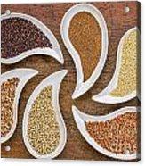 Gluten Free Grain Abstract Acrylic Print