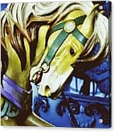 Golden Steed Acrylic Print by JAMART Photography